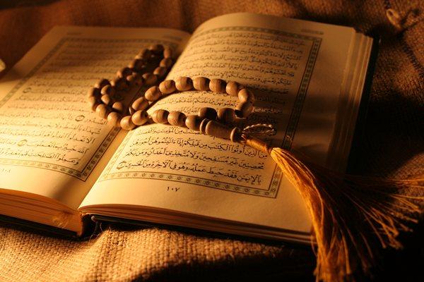 Kur'an Bilgisi